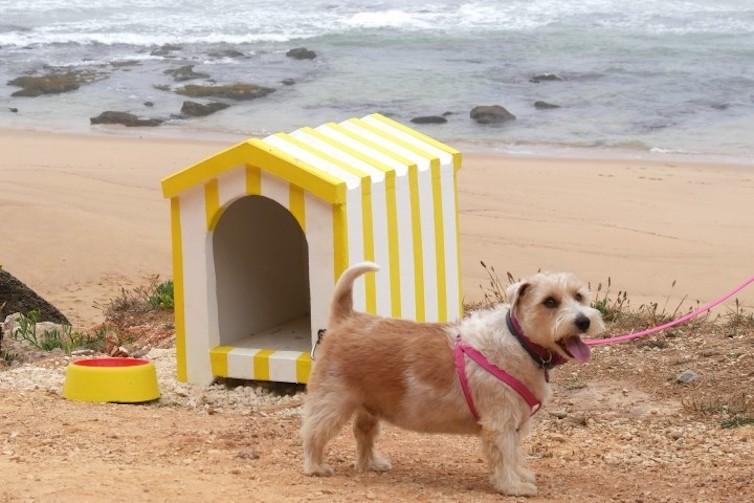Torres Vedras_praia para cães